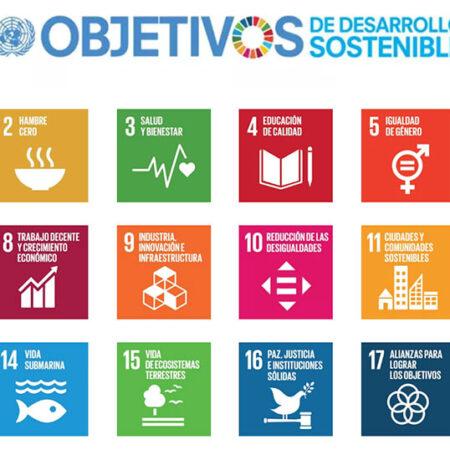 Curso para la implementación de los 17 ODS en el territorio