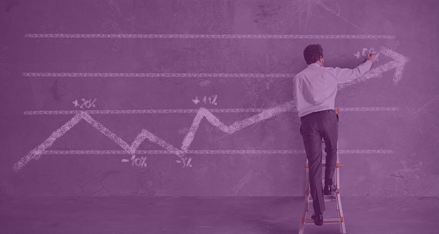 economía púrpura